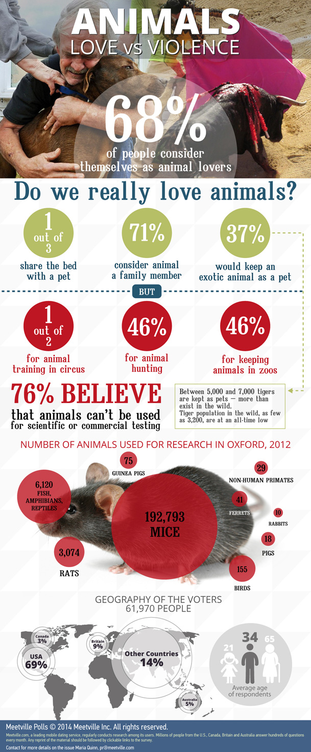 Infographic What Stands Behind Love for Animals dating-singles-meetville-matchmaking
